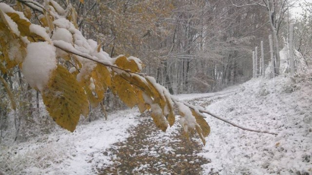 Snijeg na Majevici 1