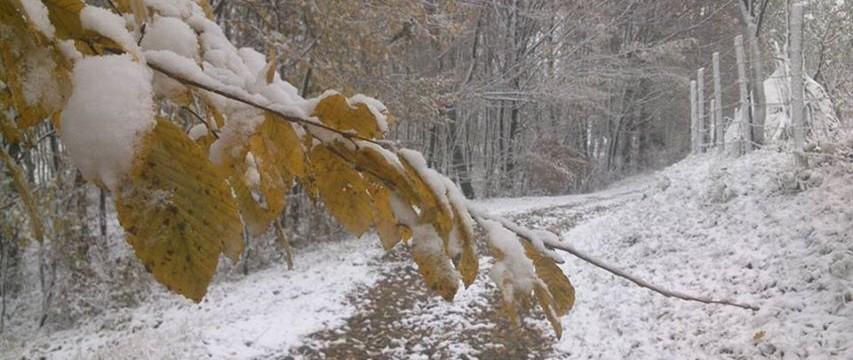 Snijeg i dalje pada, vozači oprez, kolovozi su mokri i klizavi