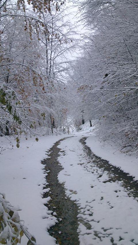 Snijeg na Majevici 2