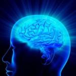 Hrana koja poboljšava pamćenje i funkcije mozga