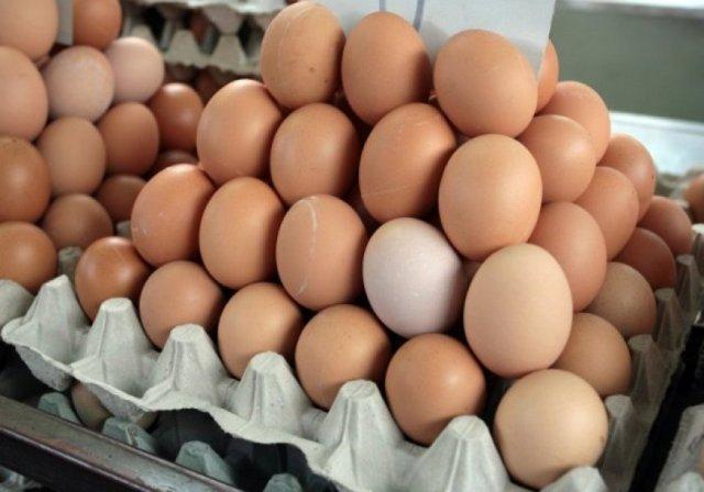 Poslije pilećeg mesa, peradari žele osigurati izvoz jaja u EU