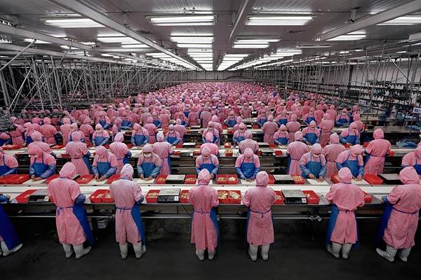 japanski-radnici
