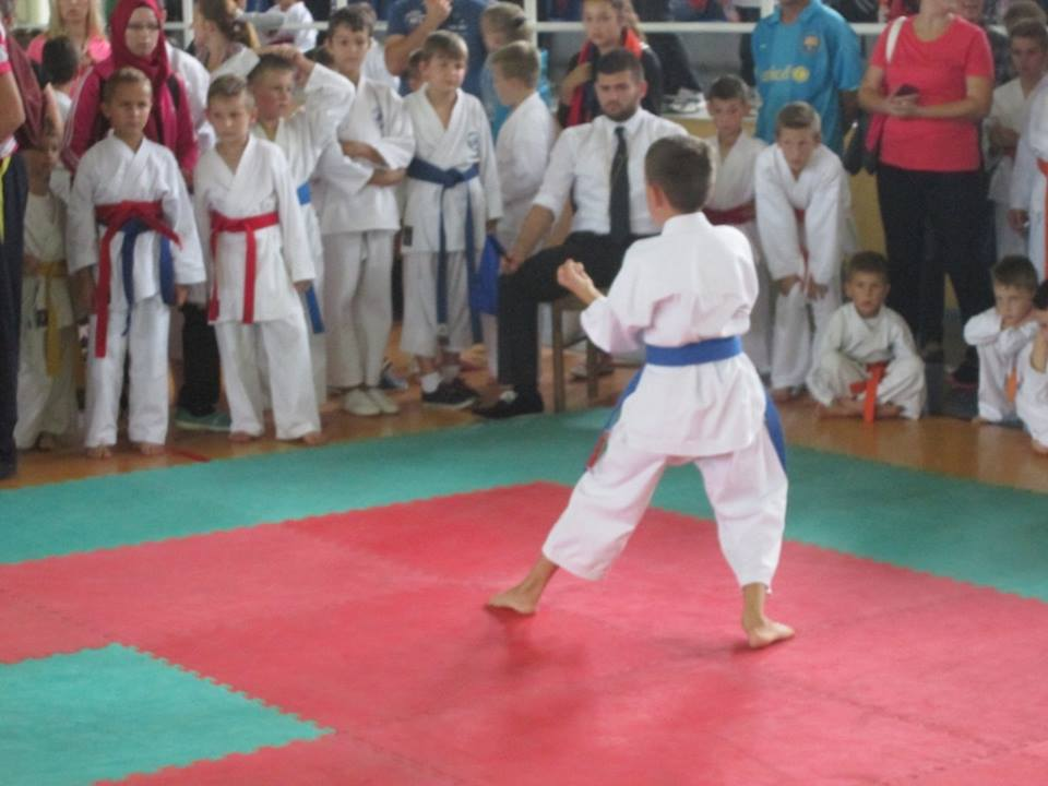 karatelukavac3