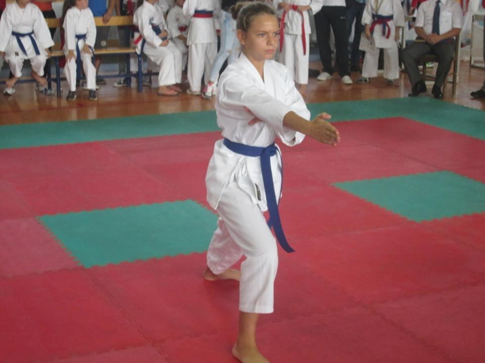 karatelukavac5