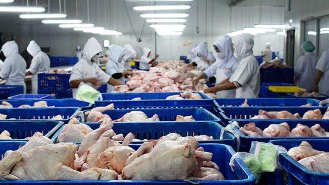 Zbog zaštite domaćih proizvođača, ograničen uvoz pilećeg mesa iz Turske