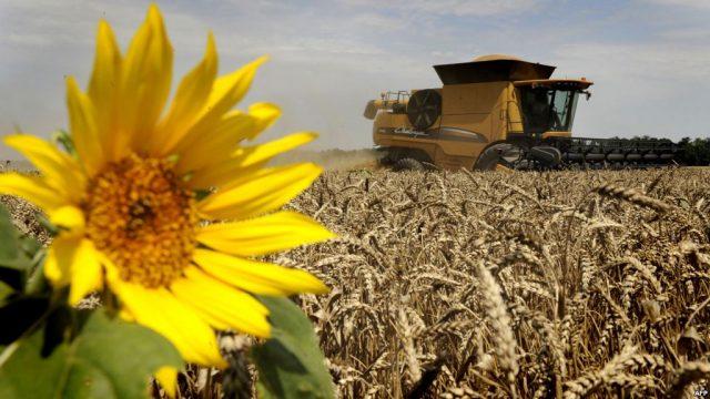 Poljoprivredni proizvođači plan proizvodnje dužni prijaviti do 15. novembra