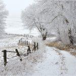 AccuWeather objavio prognozu za predstojeću zimu